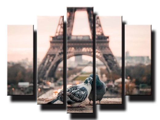 holubky v parizi pri eiffelovke 5d