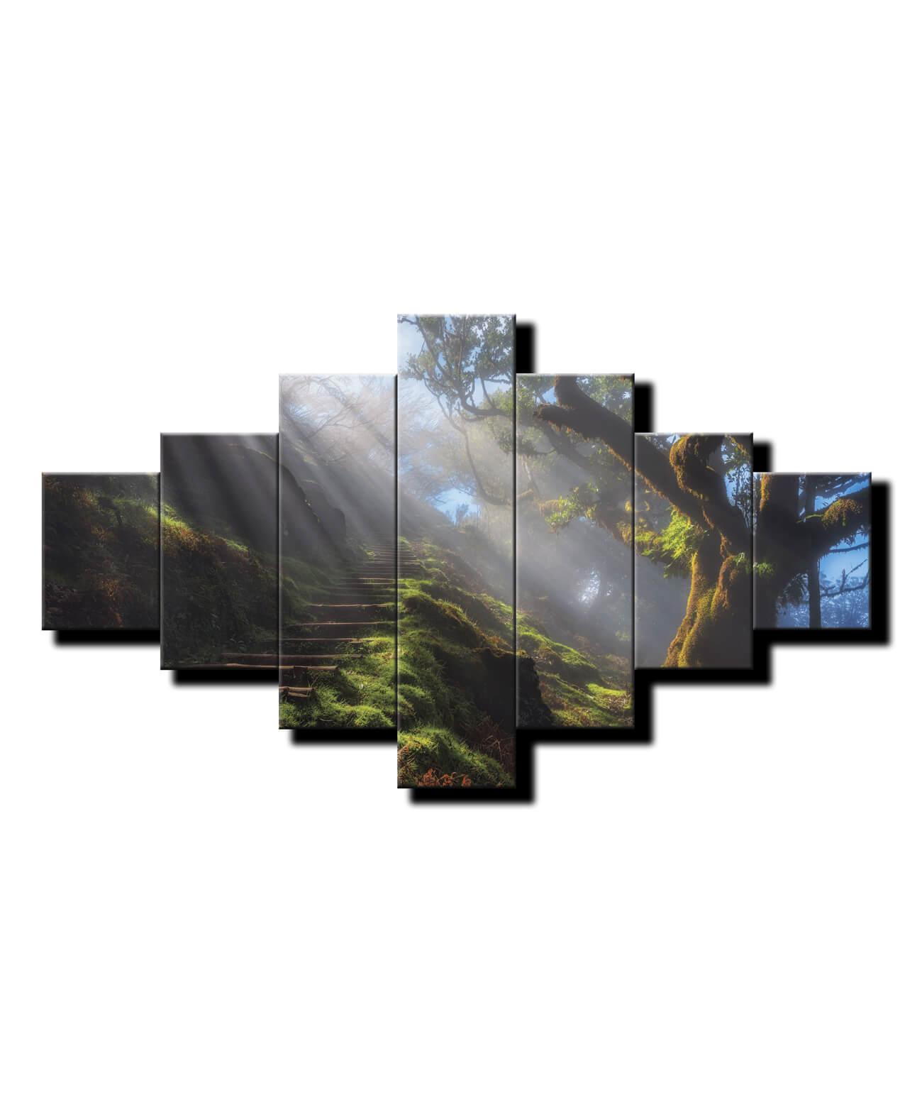 7 dielny obraz na stenu Les s lúčmi HDR