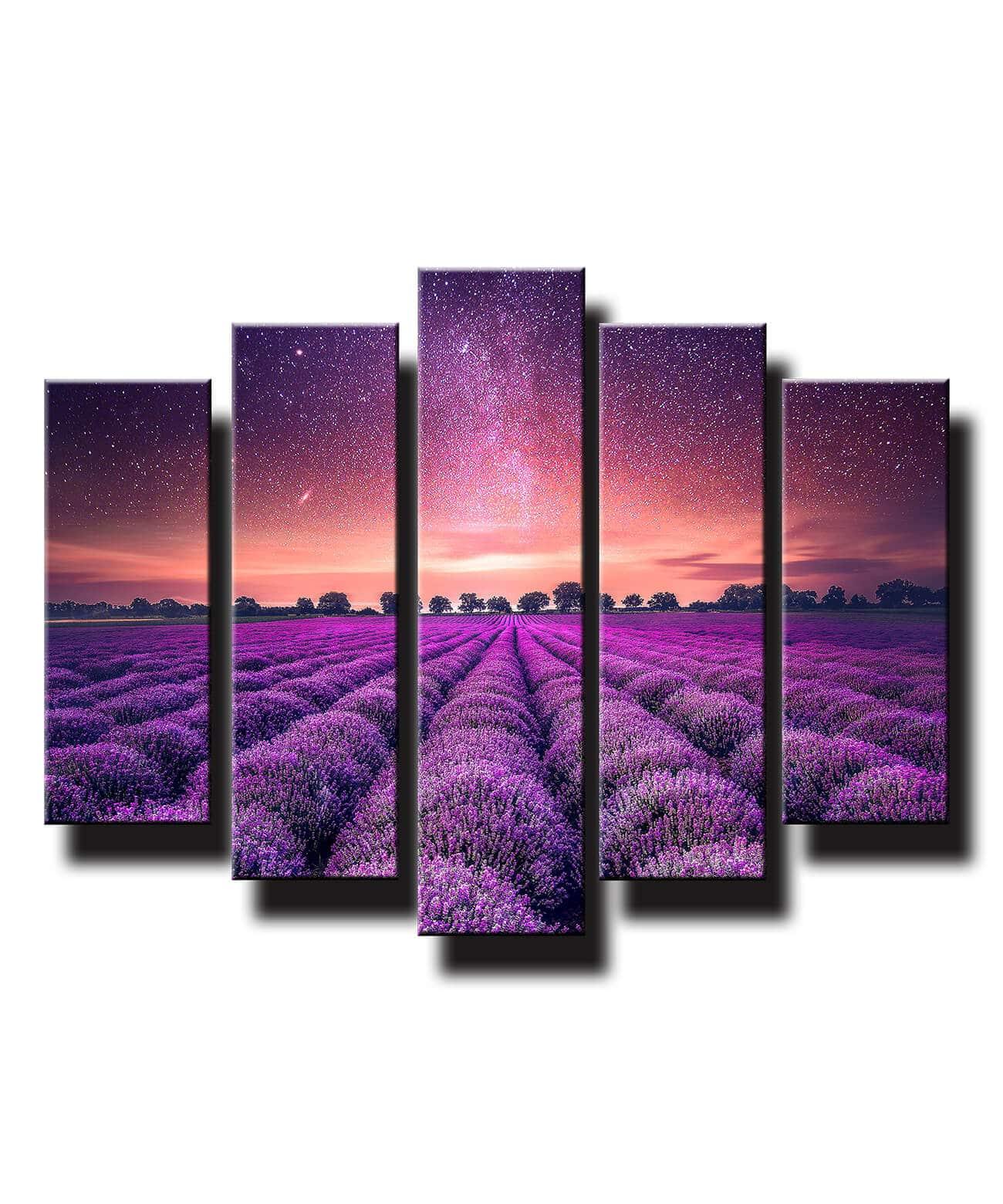 5 dielny obraz na stenu Fialové levandulové pole